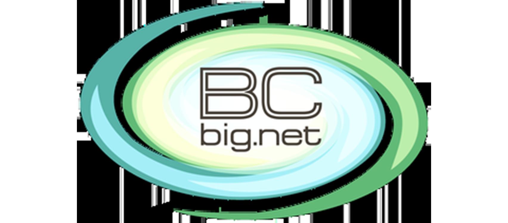 BC Big.Net (Київська, Вінницька)